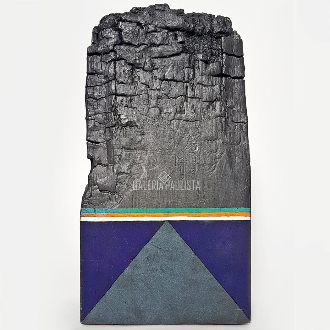 GP-E11049-Gonçalo-Ivo-Escultura-Madeira-Tempera-Galeria-Paulista-L1