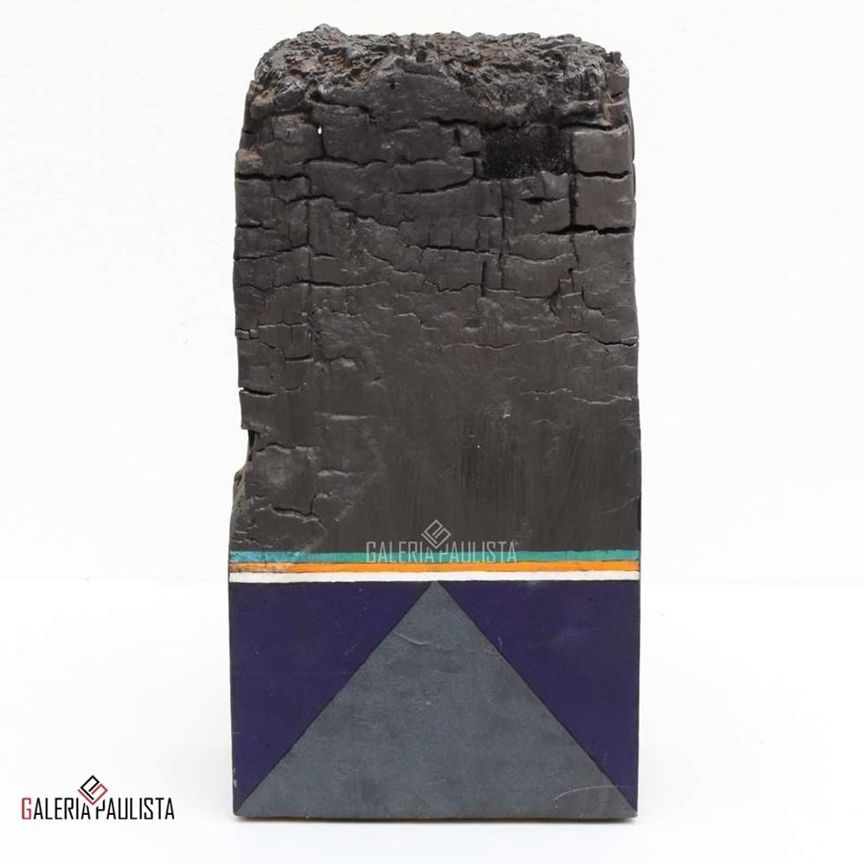 GP-E11049-Gonçalo-Ivo-Escultura-Madeira-Tempera-Galeria-Paulista-b