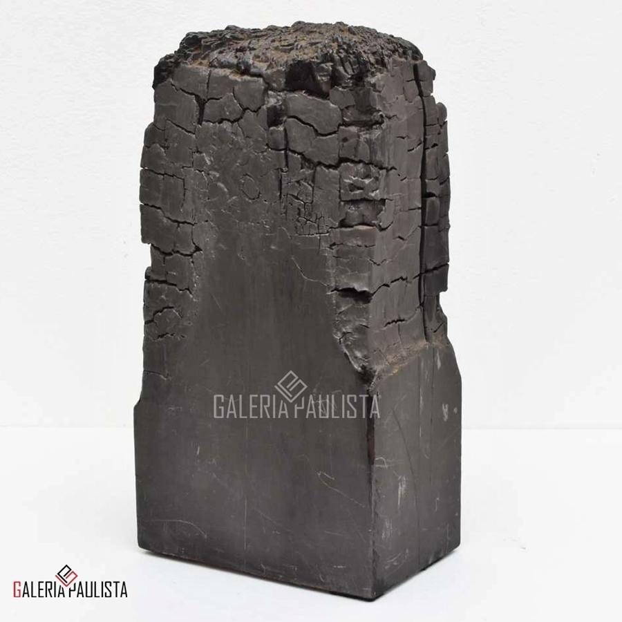 GP-E11049-Gonçalo-Ivo-Escultura-Madeira-Tempera-Galeria-Paulista-d